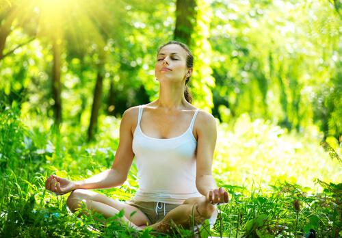 超越瞑想 マハリシ総合教育研究所 広島センター:三ッ星レッスン 岡山