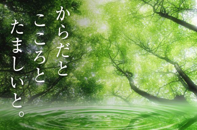 京都 統合自然療法整体スクール:三ッ星レッスン 岡山